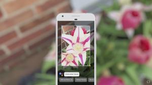 Google-Lens-1