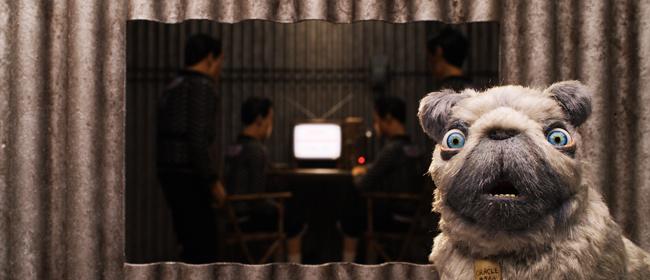 isleofdogsoracle